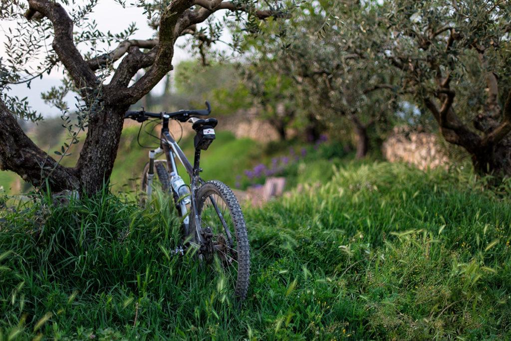Vaellus- ja pyöräilyreitit